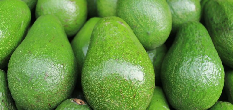 As NAFTA negotiations continue, the outcome could have a big impact on the tiny avocado